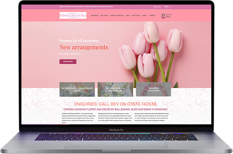 ballooning-buds-and-bows website design penzance